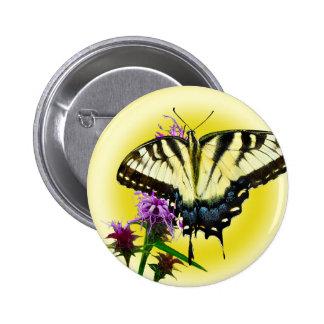 Mariposa del este del tigre en fondo amarillo
