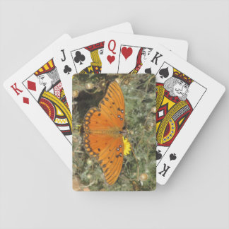 Mariposa del Fritillary del golfo Barajas De Cartas