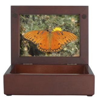 Mariposa del Fritillary del golfo Caja De Recuerdos