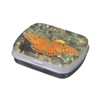 Mariposa del Fritillary del golfo Jarrones De Dulces