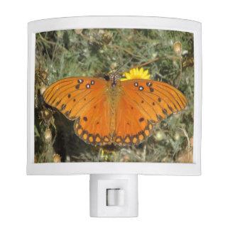 Mariposa del Fritillary del golfo Lámparas De Noche