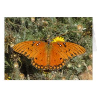 Mariposa del Fritillary del golfo Tarjeta Pequeña