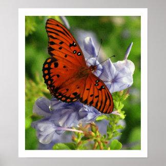 Mariposa del Fritillary flores azules - artística Poster