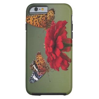 Mariposa del Fritillary (hyperbius de Argyreus) en Funda De iPhone 6 Tough