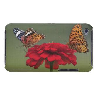 Mariposa del Fritillary (hyperbius de Argyreus) en iPod Touch Cárcasas