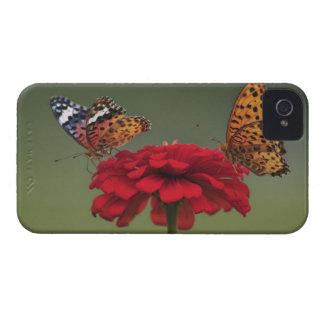 Mariposa del Fritillary (hyperbius de Argyreus) en iPhone 4 Case-Mate Protectores