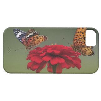 Mariposa del Fritillary (hyperbius de Argyreus) en iPhone 5 Case-Mate Protector