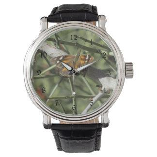 Mariposa del hocico relojes de mano