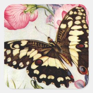 Mariposa del jardín - pegatina