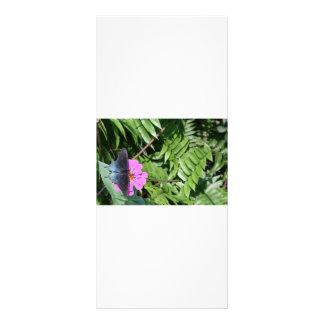 Mariposa del negro azul en la flor púrpura, hoja v tarjeta publicitaria
