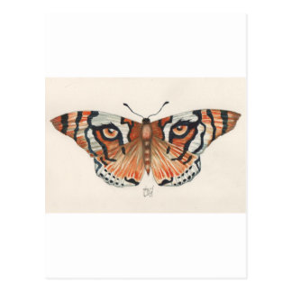 mariposa del ojo del tigre tarjetas postales