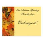 Mariposa del otoño tarjetas postales