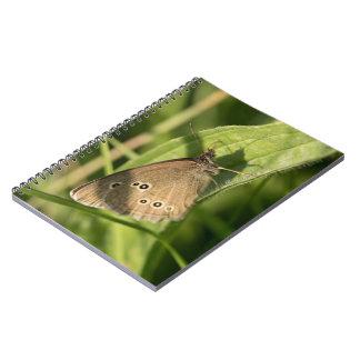 Mariposa del rizo cuadernos