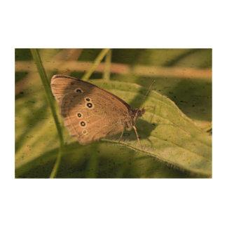 Mariposa del rizo impresión en corcho