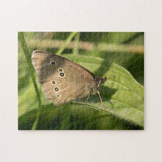 Mariposa del rizo puzzle