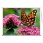 mariposa del social de las rondas de las mariposas tarjetas
