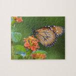Mariposa del soldado (eresimus del Danaus) que ali Puzzle Con Fotos