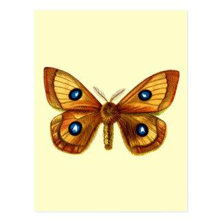 Mariposa del Tau de Aglia Postales