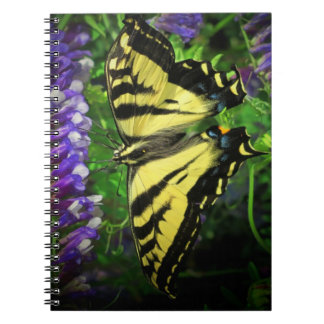 Mariposa del tigre del vuelo y campanas azules note book