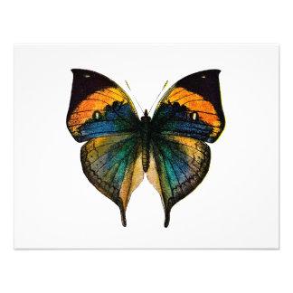 Mariposa del vintage - 1800 s mariposa antigua Lit Invitaciones Personales