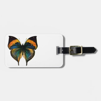 Mariposa del vintage - 1800's mariposa antigua Lit Etiqueta De Equipaje