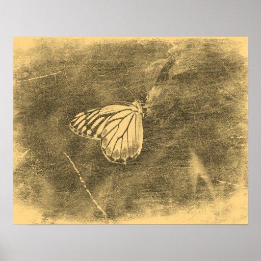 Mariposa del vintage en los posters de la flor #2