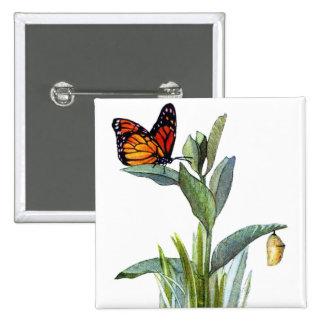 Mariposa del vintage pins