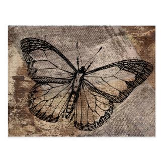 Mariposa del vintage postales