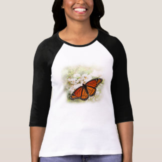 Mariposa del virrey playera
