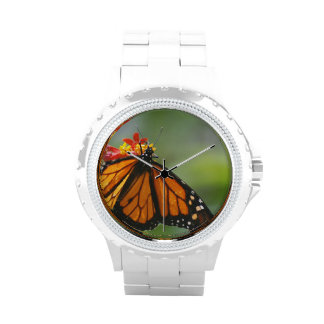 Mariposa del virrey relojes de mano