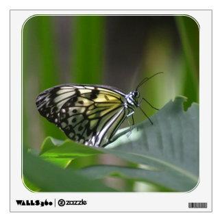 Mariposa delicada