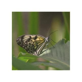 Mariposa delicada impresión en madera