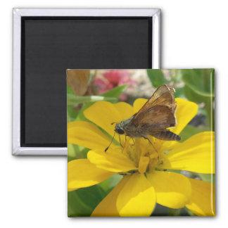 Mariposa e imán amarillo de la flor
