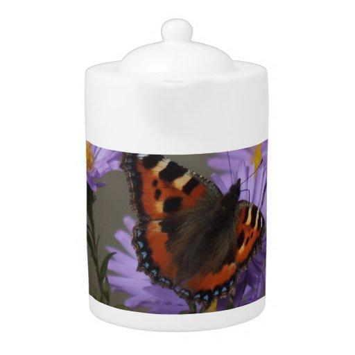 Mariposa en asteres