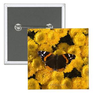 Mariposa en asteres amarillos pin cuadrado