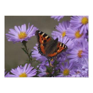 "Mariposa en asteres invitación 5.5"" x 7.5"""