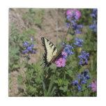 Mariposa en Bluebonnet Teja Ceramica