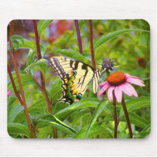Mariposa en Coneflower púrpura Tapete De Ratones