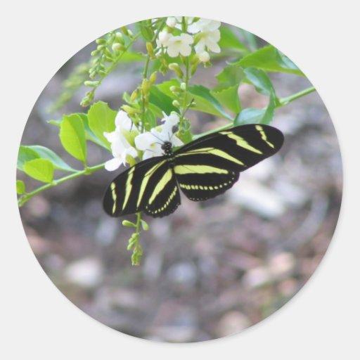 Mariposa en descanso pegatina redonda