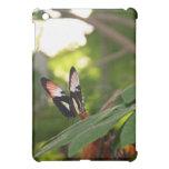 Mariposa en el caso del iPad de la hoja