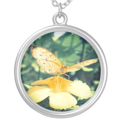 mariposa en el collar amarillo de la flor