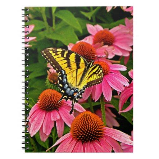 Mariposa en el cuaderno de la flor v21