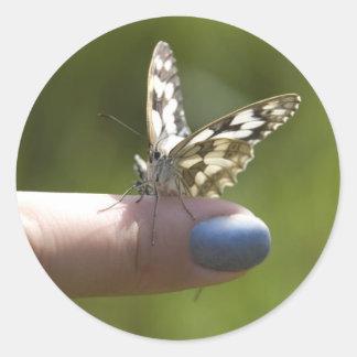 mariposa en el dedo pegatina redonda