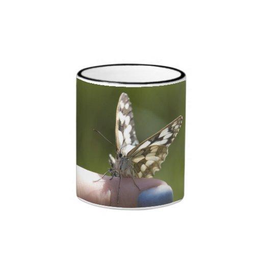 mariposa en el dedo tazas