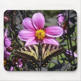 Mariposa en el flor de la flor alfombrilla de ratón