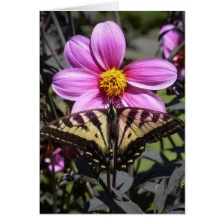Mariposa en el flor de la flor tarjeta