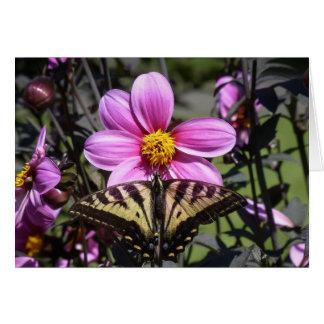Mariposa en el flor de la flor tarjeton