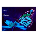 Mariposa en etiqueta ligera azul del regalo plantillas de tarjetas personales