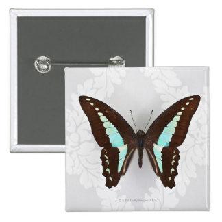 Mariposa en fondo del papel pintado pin cuadrado