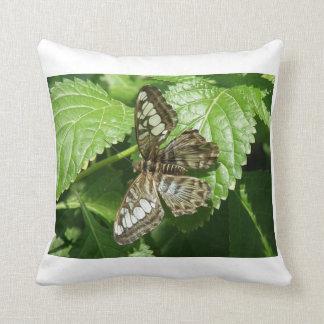 Mariposa en la almohada de la hoja